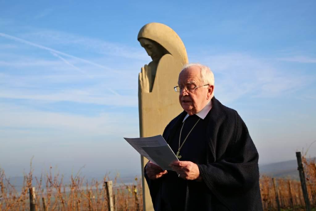 Profesor Piťha ke svaté Anežce